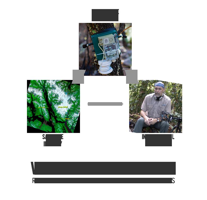Vanishing Soundscapes